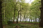 Linacre Woods and Lower Reservoir