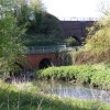 River Tame View