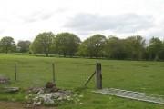 Pasture, The Wood Farm