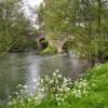 Moreton Bridge