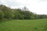 Grassland, Rosedale