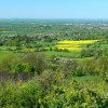 Crickley Hill Country Park (13)