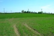 Farmland South East of Driffield