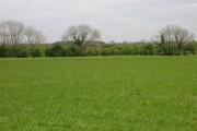 Farmland near Sleights Farm