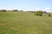 Near East Backhill of Lethenty