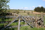 Stonefolds from East Backhill of Lethenty