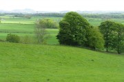 Fields, and fields, and more fields at Ratho