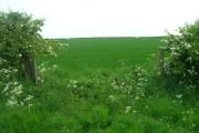 Farmland South East of Dunnington Grange