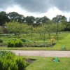Orchard in Clumber's Walled Garden
