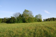 Small woodland south of Meopham Bank