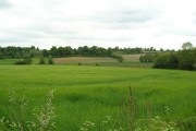 View across the Fynn Valley