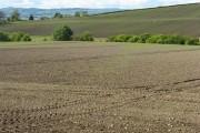 Fields at Balmerino