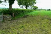 Farmland north of the A40, near Pwll-Trap