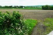 Farmland south of the A40, near Pwll-trap