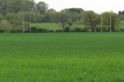 Farmland east of Market Bosworth