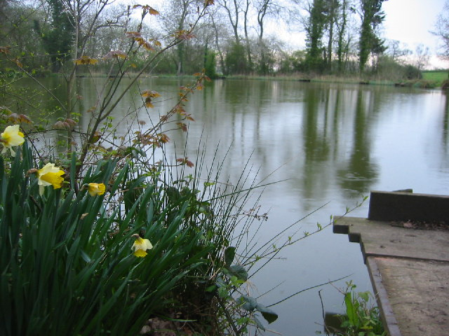Damask green in hertfordshire yourlocalweb for Nearest fishing lake