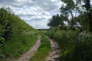 College Road (track)