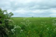Farmland near Gransmoor