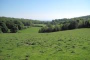 Farmland near Maeshafn