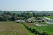 Halberton : Church, Road & Strawberry Field