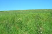 Farmland North of Fordon