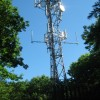 Phone Mast in West Wood