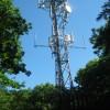 Phone Mast in West Wood