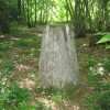 Trig Pillar in West Wood