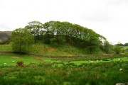 Woodland crowned hill