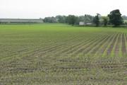 Farmland Off Warrington Lane