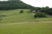 Chase Hill and Hill Farm