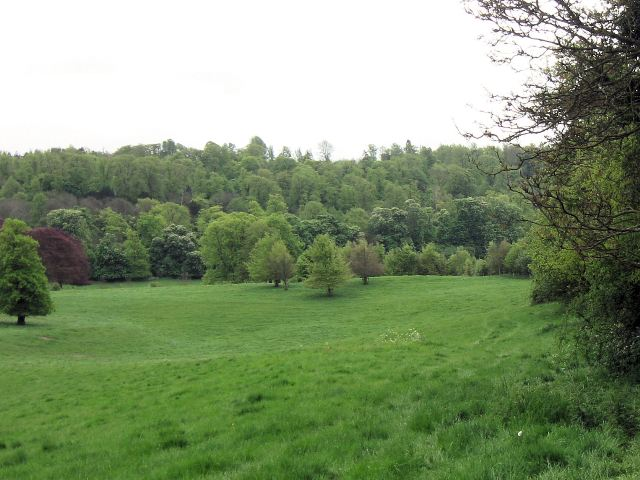 Tring Park – Looking towards the Bypass