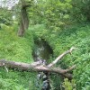 Old Eea Brook