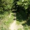 Path to Stapleford