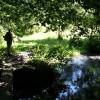 Crossing Shirley Brook