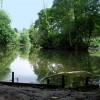 Pond in Stone Lodge Park