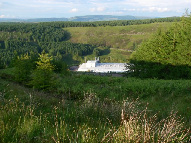 View down beside forest into Cwm Rhondda Fach