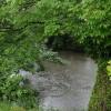 A Rain Splattered Derwent