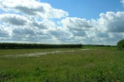 Farmland South of the A614