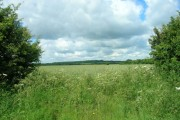 Farmland South East of Southburn