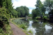 Brindley Canal in the (not so) Black Country