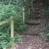 Steep steps off  bridleway near Tilford in Surrey