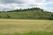 Fir Hill