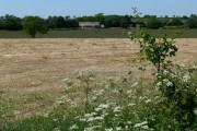 Farmland near Station Poultry Farm