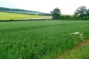 Mixed arable and horticultural land