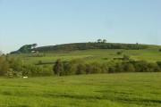 View of Shaw Farm