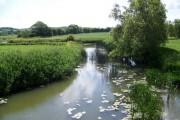 River Stour near Marnhull
