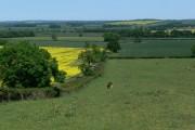 Farmland south of Melton Mowbray
