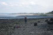 Fossil Hunting at Warden Point