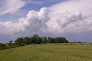 Field east of Croydon Road